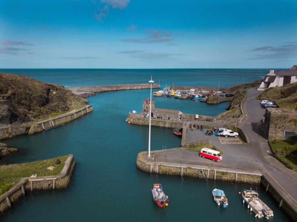 Poppy at Amlwch Port