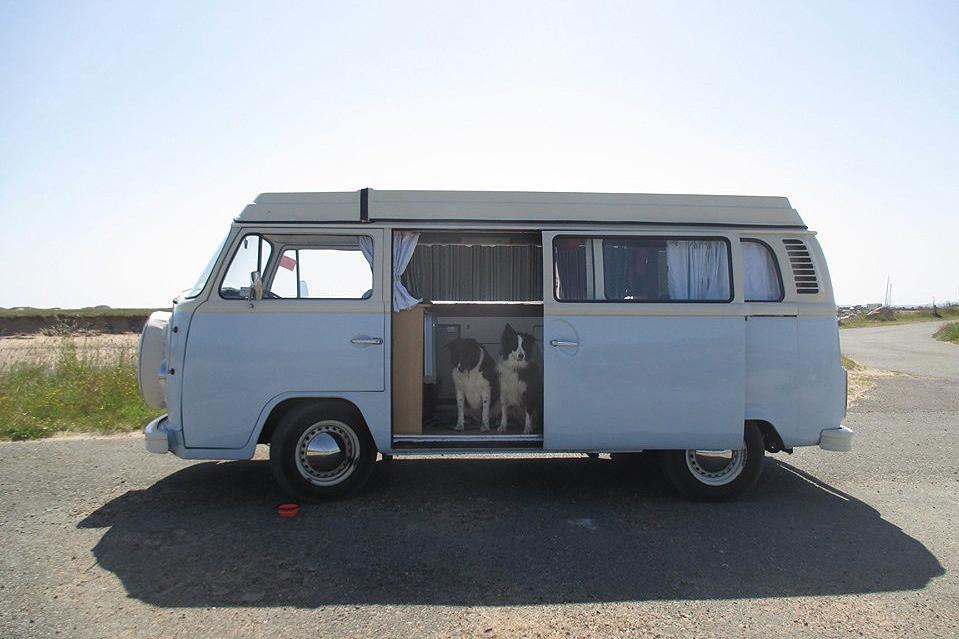 dog-friendly campervan